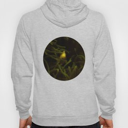 Hiding in the shadows but seen in the light Hoody