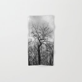 Coven of trees Hand & Bath Towel