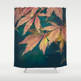 Fall Acer Leaves Shower Curtain