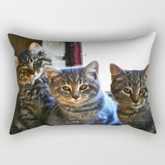 What Are You Looking At? x 3 Rectangular Pillow
