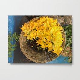 Squash Blossoms Metal Print