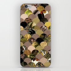 Autumn Scalloped Pattern iPhone & iPod Skin