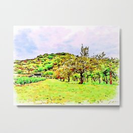 Hortus Conclusus: countryside with olive tree and vineyard Metal Print
