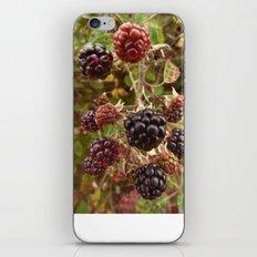 Autumn's Bounty iPhone & iPod Skin