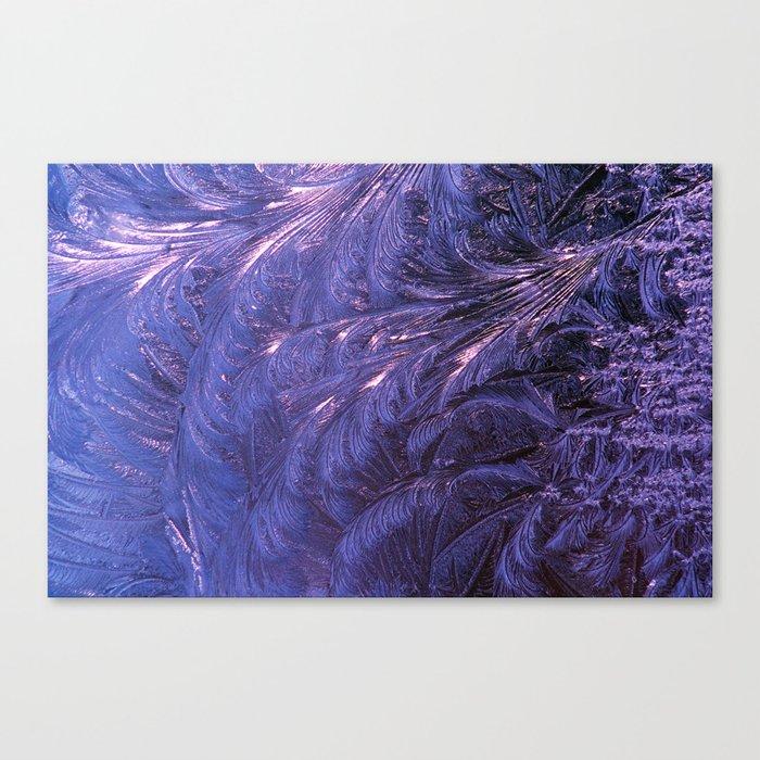 Ice Fractals 2 Canvas Print