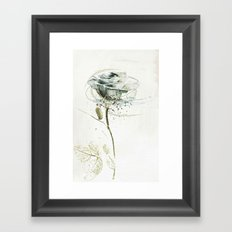 rose3 Framed Art Print
