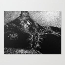 HERSCHEL THE CAT Canvas Print