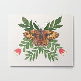 Wall Butterfly Metal Print
