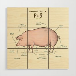 Anatomy of a Pig Wood Wall Art