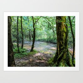 Enchanting Art Print