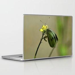 Green Winged Fairy Butterfly Laptop & iPad Skin