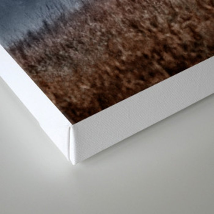 Lost In Fog Canvas Print