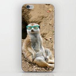 Sunny Meerkat iPhone Skin
