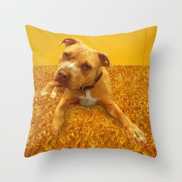 CHENiLLE (shelter pup) Throw Pillow