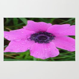 Purple Anemone - Anemone Coronaria Flower Rug