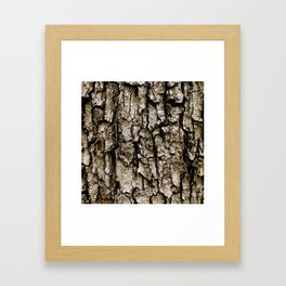 Tree Bark Framed Art Print