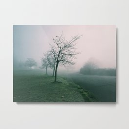 Early Morning Fog Metal Print