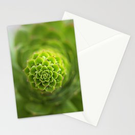 Point of Focus Stationery Cards