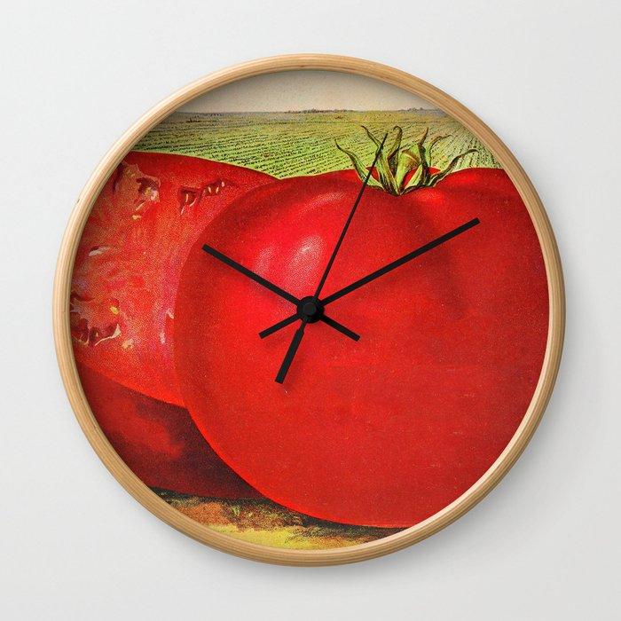 Vintage Illustration of a Beefsteak Tomato (1905) Wall Clock
