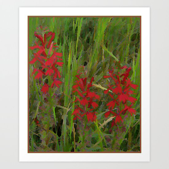 Red Wild Flowers Art Print