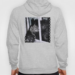 Cat Reflection And The Snapped Menace  Hoody