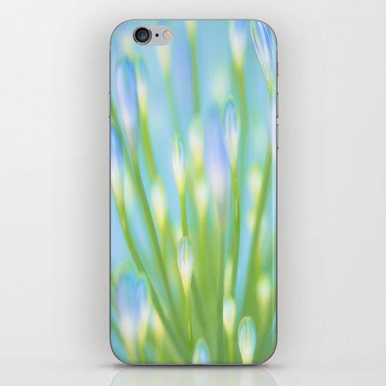 Blue & Green iPhone & iPod Skin