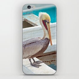 PELICAN POSE iPhone Skin