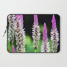 Hong Kong Wildflower Display Laptop Sleeve