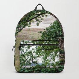 Bunker Trees Veluwe the Netherlands Backpack
