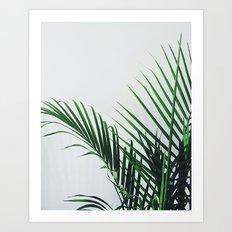 Palm Color Art Print