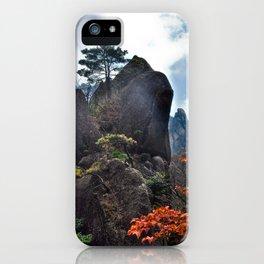 Zen Mountain iPhone Case