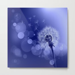 Pusteblume - blau Metal Print