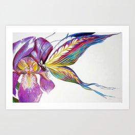 Iris Butterfly Art Print