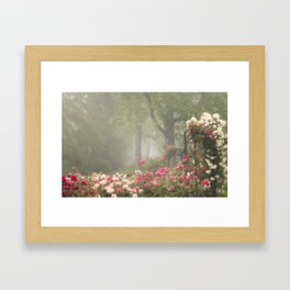 Blooms in Fog II Framed Art Print