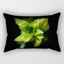 Aptenia succulent plant Rectangular Pillow