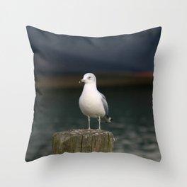 Alone - Photo Throw Pillow