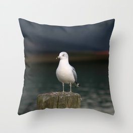 Alone - Photo Throw Pillow