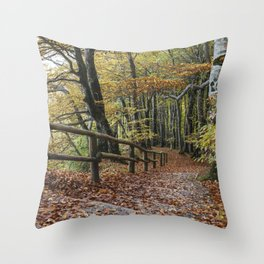 Downstairs To The End Of The Year Throw Pillow