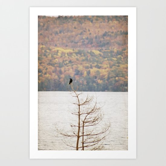 Fall Bird Art Print