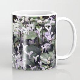Longwood Gardens Autumn Series 232 Coffee Mug