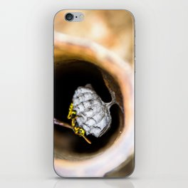 Solitary iPhone Skin