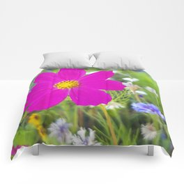 Flowers Go Wild in Wimbledon 5 - Cosmos the bold Comforters