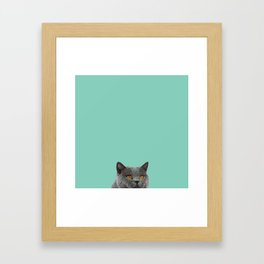 Duck Egg Blue British Short-hair Wall Decor Cat Clock Framed Art Print