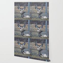 Mule Deer in the Brush Wallpaper