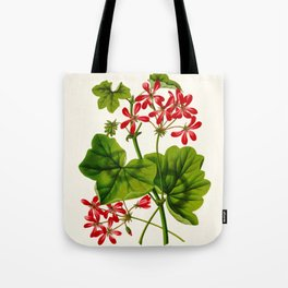 Joy Leaved Geranium Vintage Scientific Botanical Flower Illustration Hand Drawn Art Tote Bag
