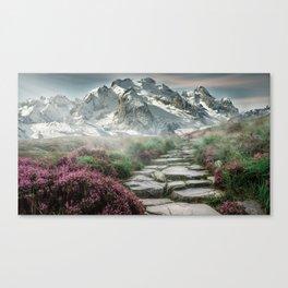 Mountain Path Landscape Canvas Print