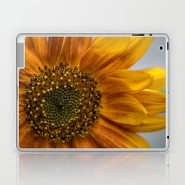 Sunflower in red Laptop & iPad Skin