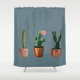 Three Cacti On Blue Background Shower Curtain