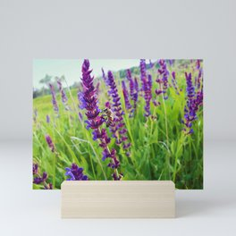 sage salvia meadow Mini Art Print