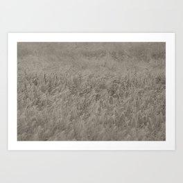 Field Recording Art Print
